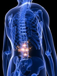 Why Chiropractic Works: Research Explains Biological Processes Behind Spinal Adjustments